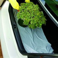 Picture of GREEN PLASTIC TRUNK MAT